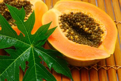 La feuille et la graine de papaye deux anticancer natuels puissants