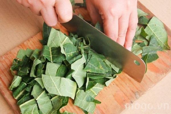 la feuille de papaye l'un des meilleur anticancer naturel